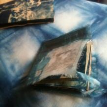 blue books