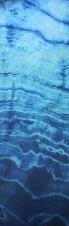 Hand dyed indigo silk