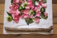 eco_print_flowers